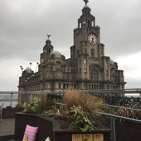 Goodness Gracious Roof Garden