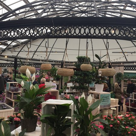 Barton Grange Garden Centre - Workshops : photo1.jpg