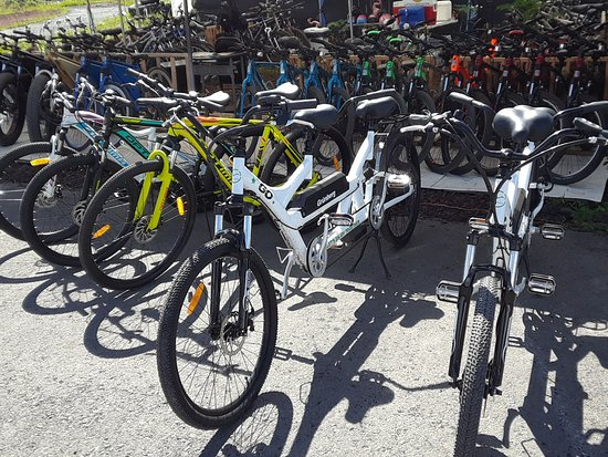 Giant Revel and ATX - Picture of Kalapana Bike Rental, Pahoa