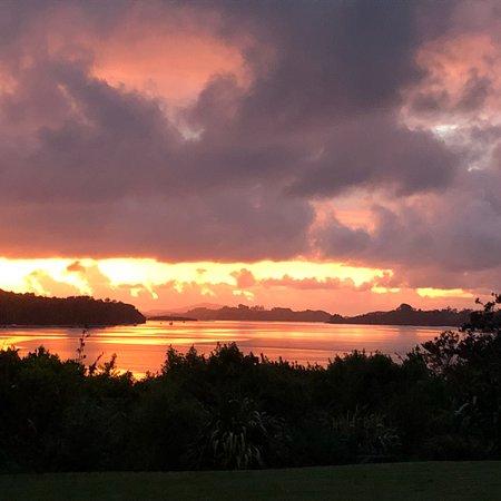Aroha Island Ecocentre: photo0.jpg