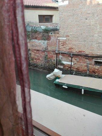 Alberghiera Venezia: Questo è quanto si vede dalle finestre, più la cucina