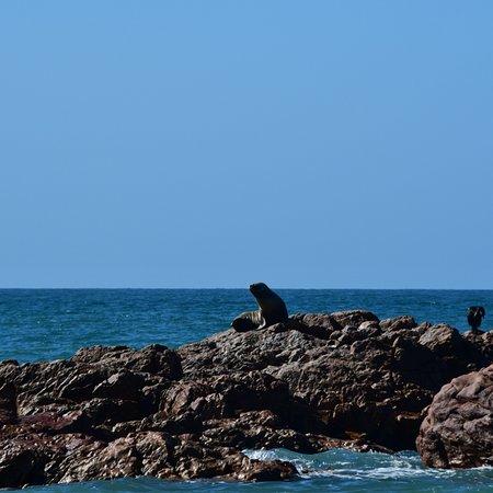 Playa Piedras Coloradas: photo4.jpg