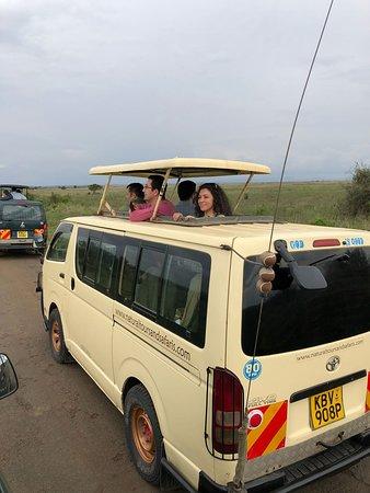 The best Safari