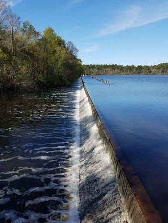McRae-Helena, GA: Lake Dam