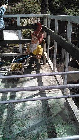 San Ignacio, Сальвадор: Comedor terraza del hotel