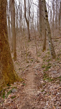 Trails Are Very Well Marked With Appropriately Colored Paint
