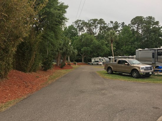 Tropical Palms Resort and Campground: Rv Sites