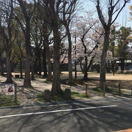 Otoshi Park
