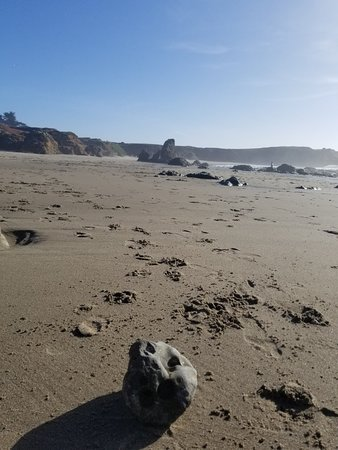 Surf & Sand Lodge: 20180328_172014_large.jpg