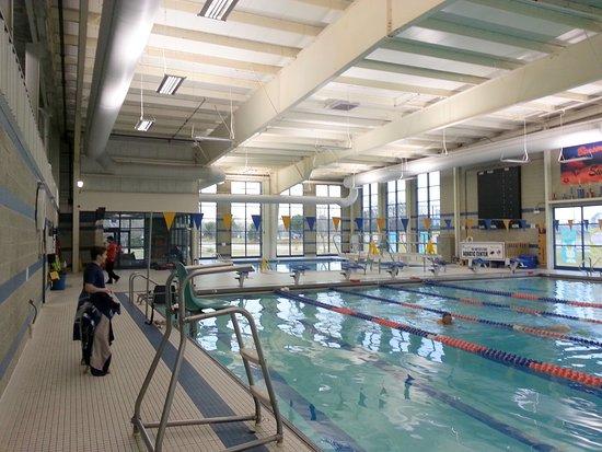 Bensenville, IL: dive tank and lap pool