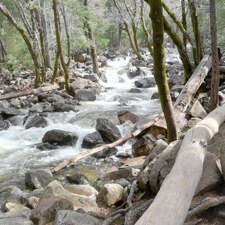 Discover Yosemite: photo4.jpg