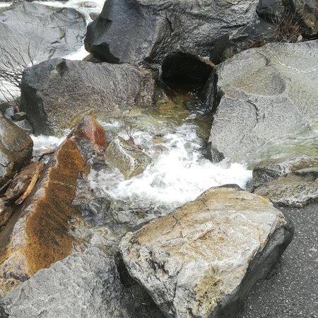 Discover Yosemite : photo6.jpg