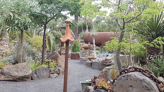 Roraima Nursery
