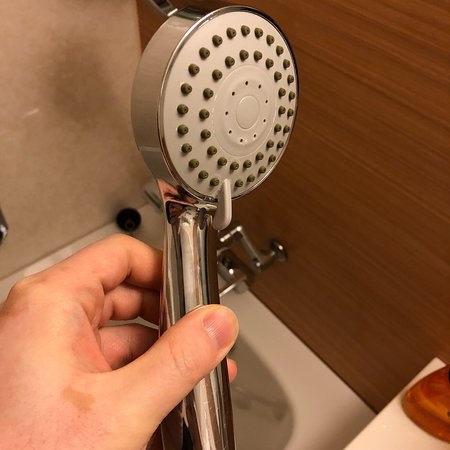 Before is TOTO , now is lousy cheap shower head. - Picture of ...