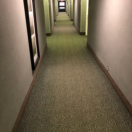 Hampton Inn Traverse City: photo2.jpg