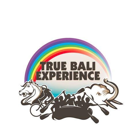 True Bali Experience