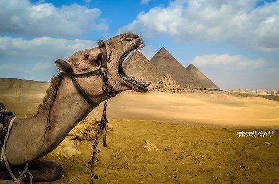 8-tägige Kairo und Nil Cruise Tour 4...