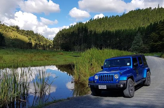 Tour Jeep privado de Bay of Islands...