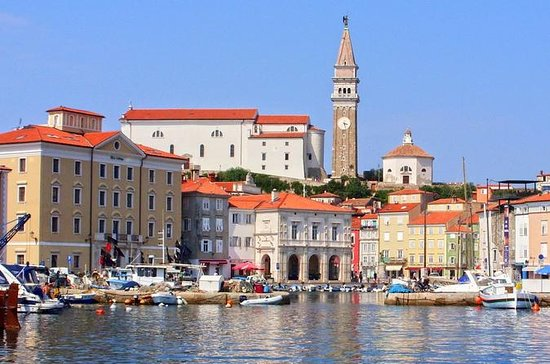 Private Tour: Panoramic Slovenian