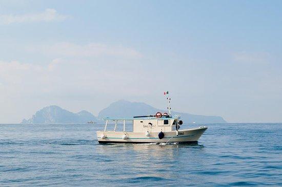 SalBoat Sorrento Fiske turer