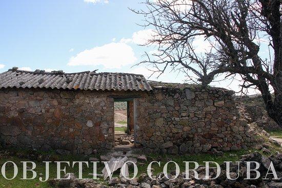 Parque Natural Cardena Montoro: se aprecian siete construcciones de cubierta vegetal y muros de piedra