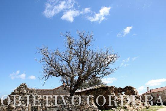 Parque Natural Cardena Montoro: La aldea de El Cerezo vivió su esplendor a mediados del siglo XX cuando estaba habitada por un c