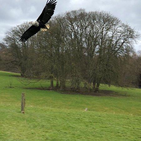 Helmsley, UK: Wonderful Visit