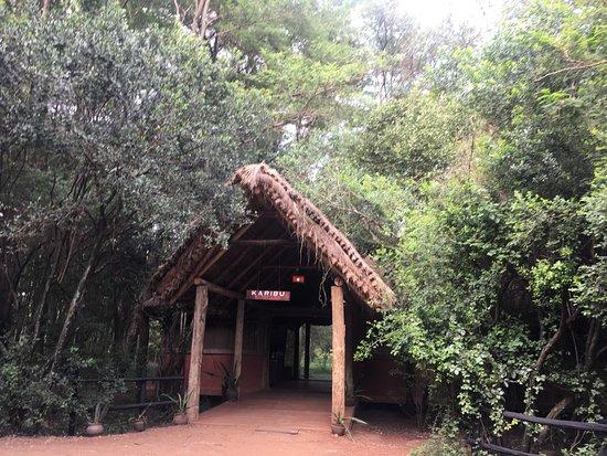 Basecamp Masai Mara: entrada al hall