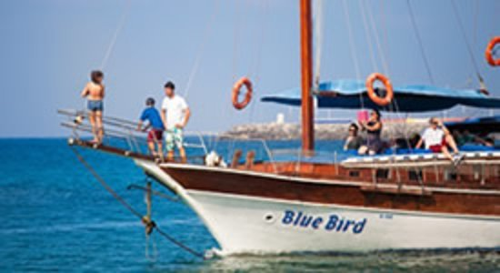 Blue Bird Boat Tours