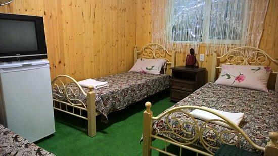 Dzhankhot, Russia: Домик с удобствами