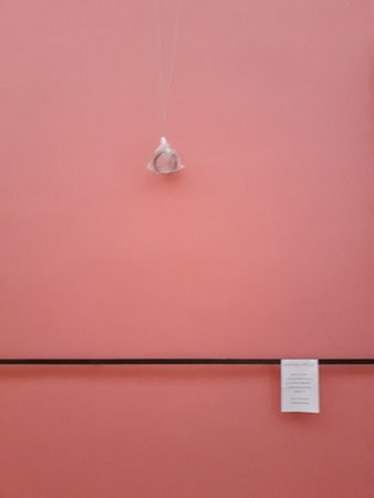 "Palais des Beaux-Arts de Lille : Colección ""Disculpe las molestias"""