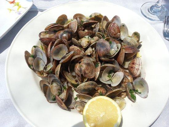 Livingalbania Il Pesce Nei Ristoranti Dai Noi Selezionati The Fish In Restaurants We