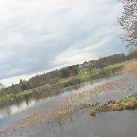 Cheshire, UK: view from the lake
