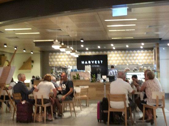 Harvest Food Store