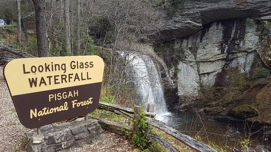 Pisgah National Forest: 20180326_151649_large.jpg