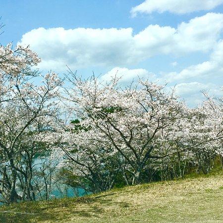 Ube Maruyama Dam