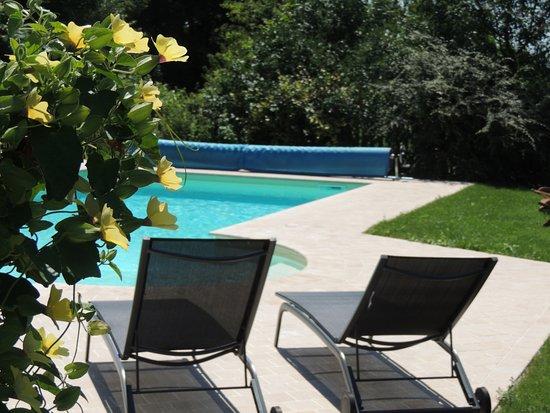 Mantenay-Montlin, France: piscine