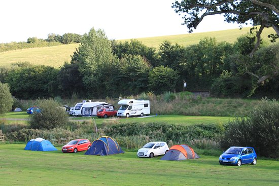 Starcross, UK: Grass Camping Pitches at Hunters Lodge Camping