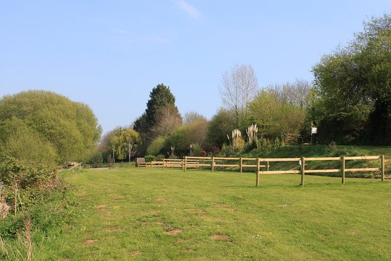 Starcross, UK: Grass Camping pitches