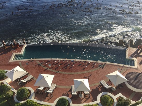 Radisson Blu Hotel Waterfront, Cape Town: The seagulls like the pool too.