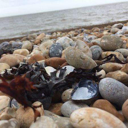 Littlestone-on-Sea, UK: photo4.jpg