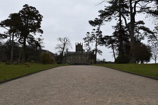 Margam Park: Looking towards the castle