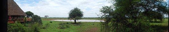 Вой, Кения: Wasserloch