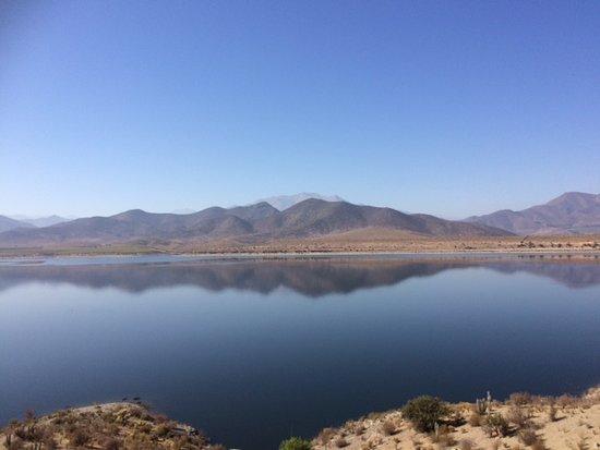Coquimbo Region, Chile: Hermosa vista