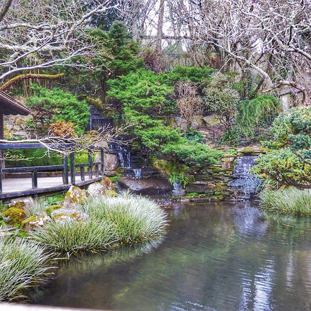 The Japanese Garden Photo