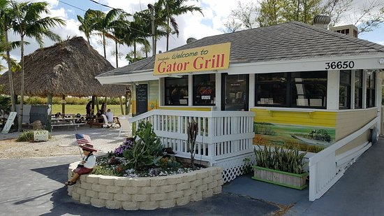 Everglades Gator Grill: 20180328_161426_large.jpg
