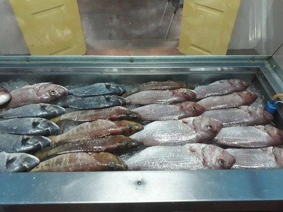Paul do Mar, Portugal: sempre com peixe fresco a sua escolha