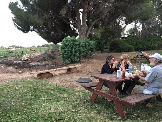 תמונה מVered Hagalil Guest Farm