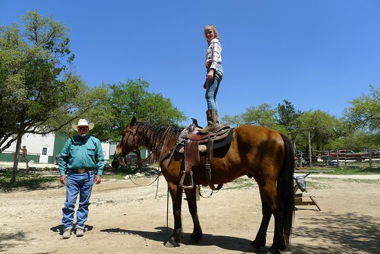 Rancho Cortez: Lessons about horse training were awesome.