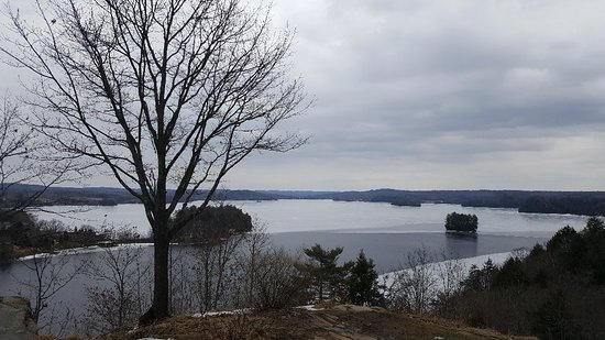 Lions Lookout: 20180331_120911_large.jpg